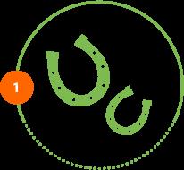 Icon Tierversicherung zwei Hufeisen Schritt 1