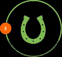 Höper Icon Tierversicherung großes Hufeisen Schritt 3