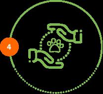 Höper Icon Tierversicherung Hände Pfote Schritt 4