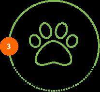 Höper Tierversicherungen Icon Pfote Schritt 3